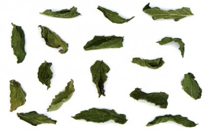 Δυόσμος, Mentha spicata