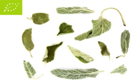 ~Φασκόμηλο, Salvia officinalis, bio~